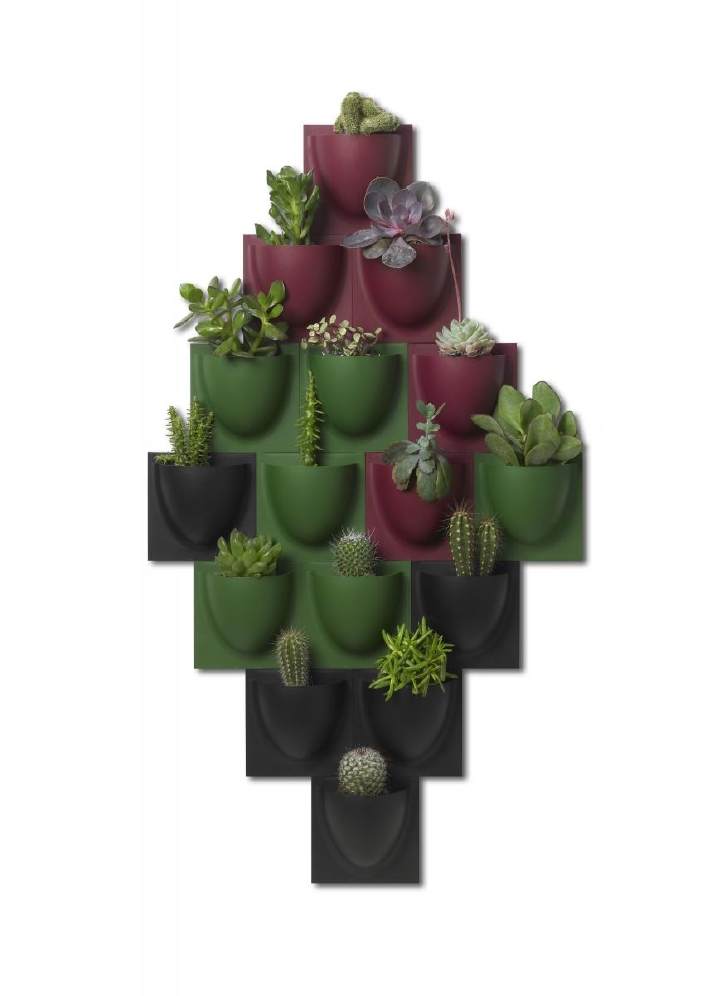 Vertiplants mini