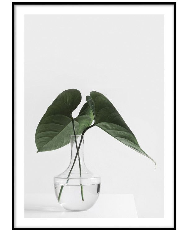 PAPERTOWN - POSTER MONSTERA I VASE