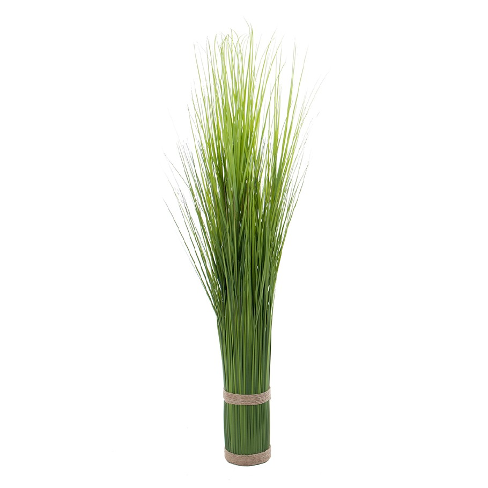 Mr Plant Gress