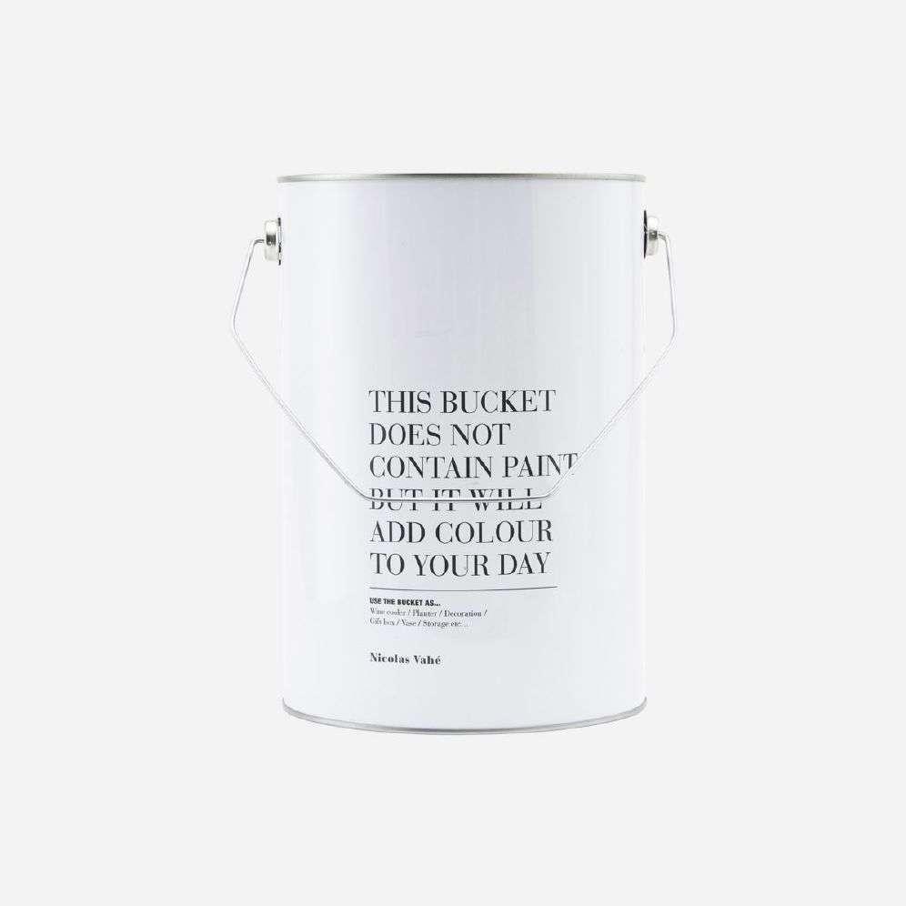 MR PLANT - ALLIUM 40 CM