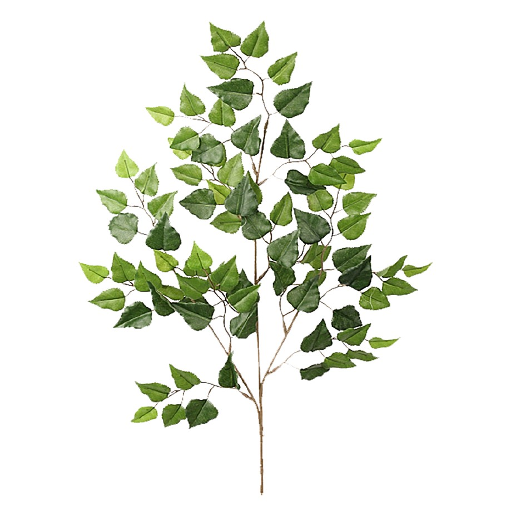 MR PLANT - BJØRK Grønn 70 Cm