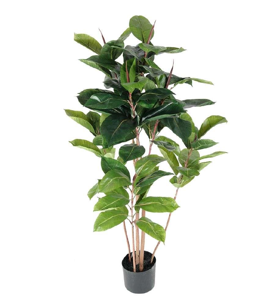 CHILI KLAUS - CAROLINA REAPER GLASS V15