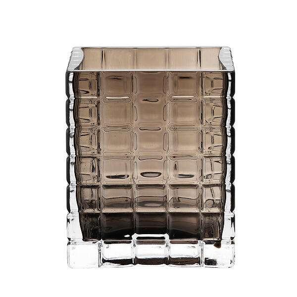 MR PLANT - DRACENA