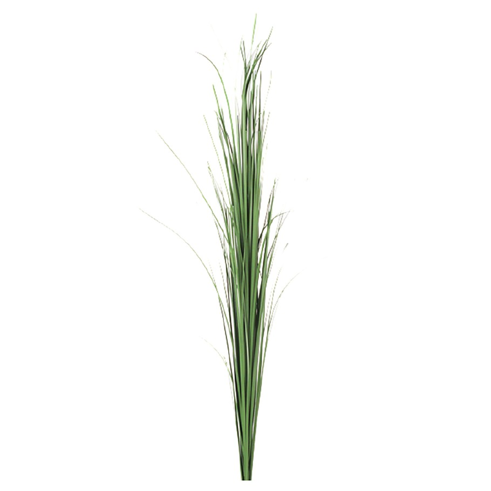 Mr Plant - Gress-strå
