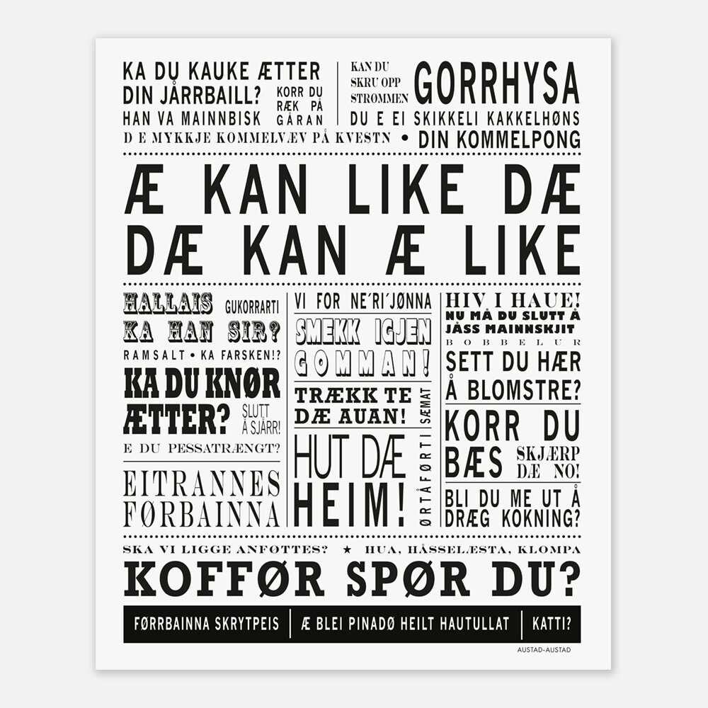 Mr Plant Rose