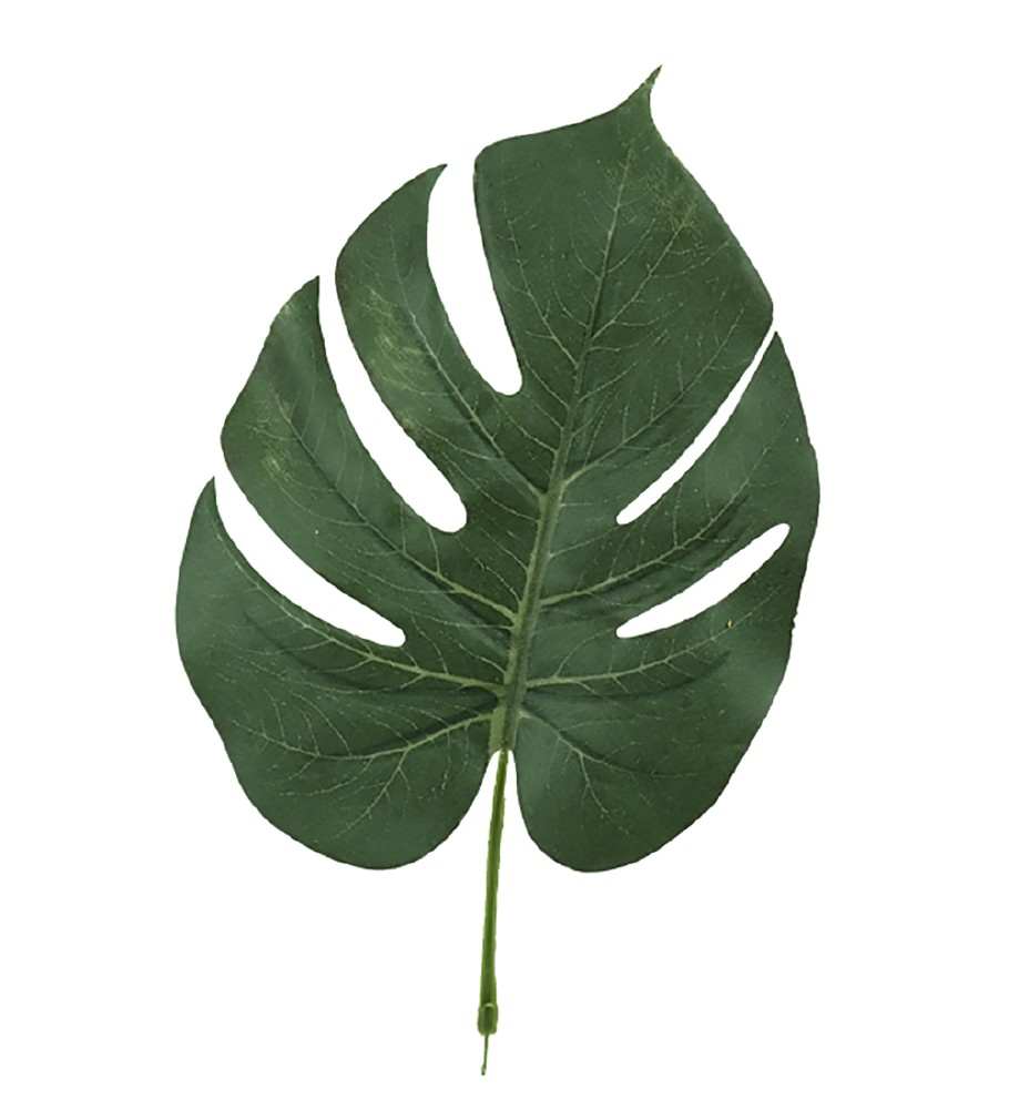 MR PLANT - MONSTERA BLAD