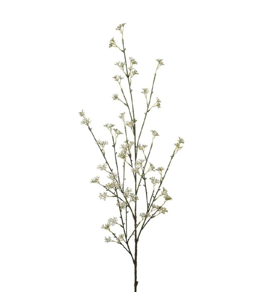 Champagneglass, Nouveau